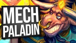 CLAWING My Way to Victory with Mech Paladin! | Standard | Hearthstone