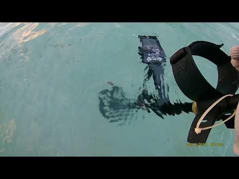Minelab Equinox 800 Underwater at 4 feet deep