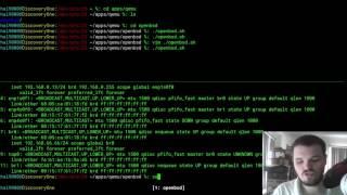 QEMU - Setting Up Network Bridge (Linux)