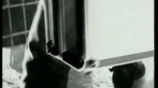 EL Кравчук - Доля