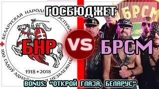 БРСМ VS БНР Госбюджет и История! Открой глаза Беларус / Общество Гомель особое мнение