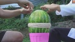 Rubber Watermelon Trick