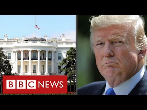 """Trump calls claims he paid no income tax for 10 years """"fake news""""- BBC News"""
