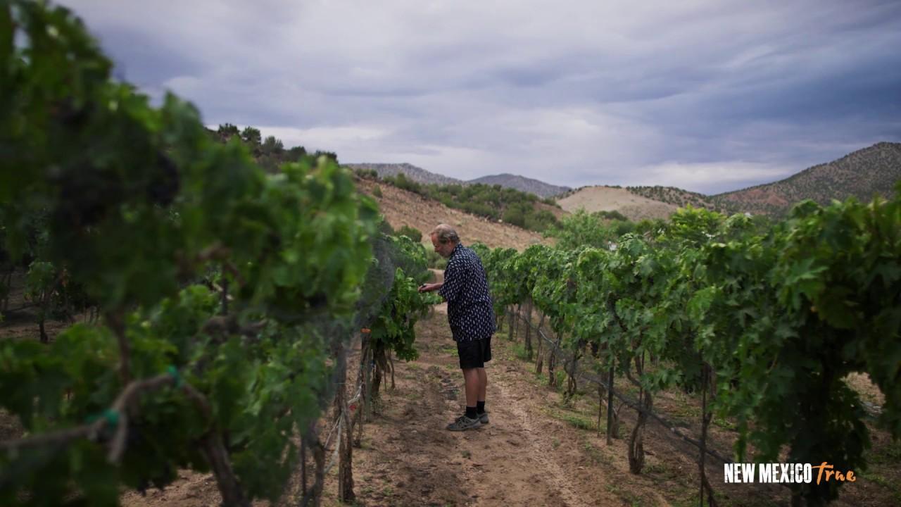Viva Vino: Black Mesa Winery displays artistry inside and outside the bottle