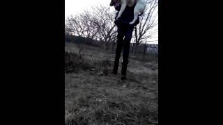 Первая помощь собаке(, 2015-02-23T11:57:39.000Z)