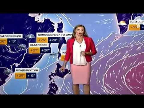 Погода сегодня, завтра, видео прогноз погоды на 3 дня 30.7.2016
