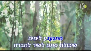 שיר לוי להשתגע קריוקי Shir Levi