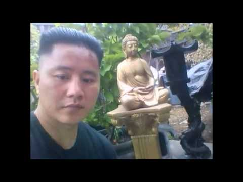 """New Update HK""""[Huynh Garden Centre]""""  Mike Huynh"""