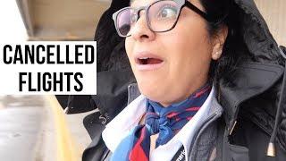 Flight Attendant Life - We're Cancelled  |  VLOG 3, 2019
