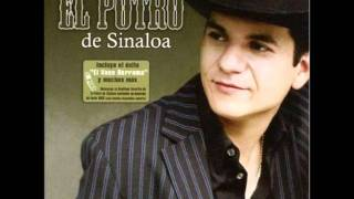 Watch El Potro De Sinaloa Voy A Buscar Un Amor video