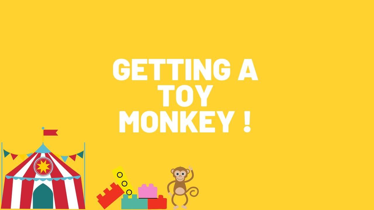 Getting a toy monkey !