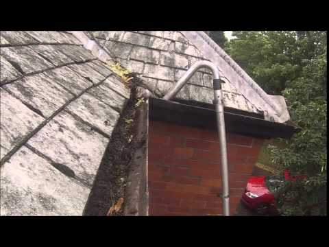 Removing plants - Gutter Cleaning Exeter (NHS)
