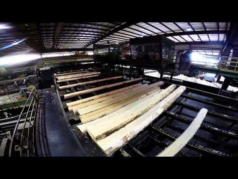 Collum's Lumber Products, LLC - Sawmill Tour