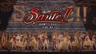 花組公演『邪馬台国の風』『Santé!!』初日舞台映像(ロング)