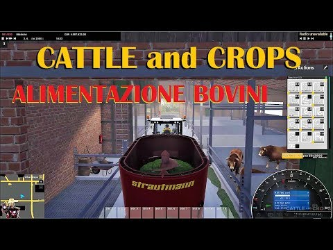 CATTLE and CROPS  - Alimentazione bovini