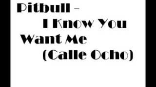 Pitbull - I Know You Want Me (Calle Ocho) (Lyrics)