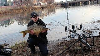 Winter Carp Fishing in Virginia (Potomac River, Va.)