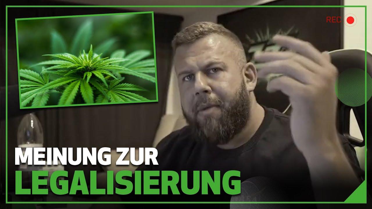 Meinung zur Legalisierung | Stream Highlight | Matthias Clemens