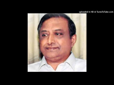 Thanjavur Kalyanaraman - Ayya_SharaNam_ayyappa - aTANa - NS Chidambaram