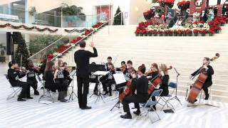Singing Strings at Edmonton City Hall