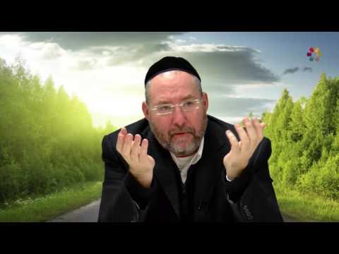 Rabbi Guy Matalon - The Way of God - Part 10