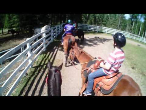 Horseback riding Camp Kananaskis, Alberta. Session 2 2013