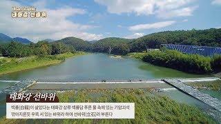[지오그래픽태화강 선바위]