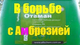 "МТЗ 82.1 с гербицидом ""Отаман"" - в борьбе с сорняками  Амброзии"
