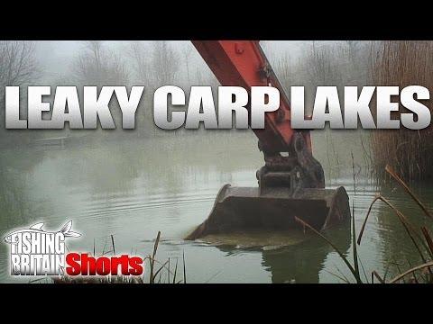 Leaky Carp Lakes  - Fishing Britain Shorts