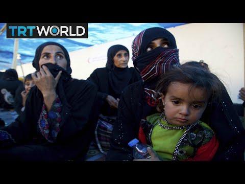 Fighting Daesh: Iraqi forces recapture Hawija from Daesh