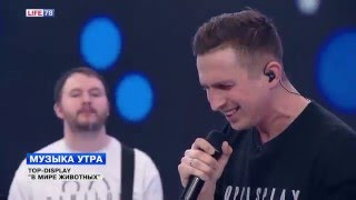 """Группа TOP DISPLAY исполняет песню """"В мире животных"""""""