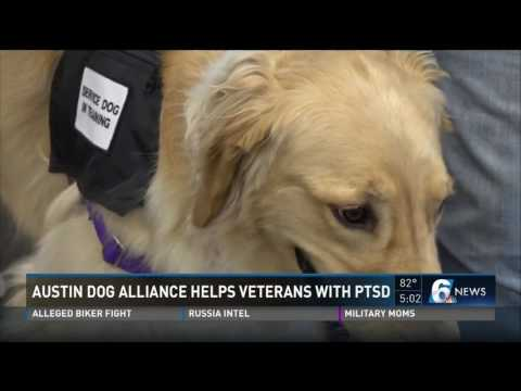Austin dog alliance helps veterans with PTSD