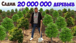 САДИМ 20 000 000 ДЕРЕВЬЕВ !