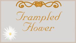 TRAMPLED FLOWER (Rpg Maker) - No he entendido nada, la verdad