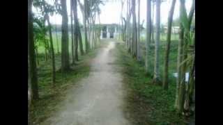 Chhataker Alo