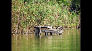 Триозерье Рыбалка отдых Отвел душу 2020 Осень Первое озеро Бесплатное