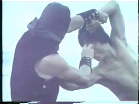 Tiger and crane fist dvd