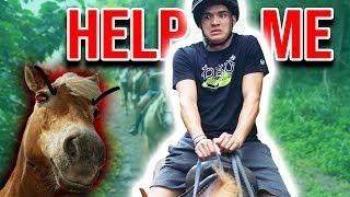 My Hawaiian Horse HATES ME!