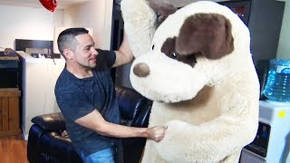 Stuffed Animal Anniversary Revenge Prank On Wife