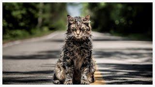 Pet Semetary (2019) Movie REVIEW