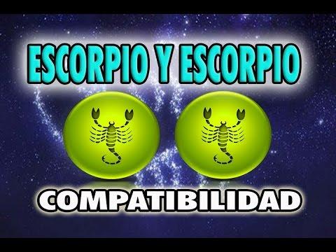 Scorpio and Leo compatibility in friendship