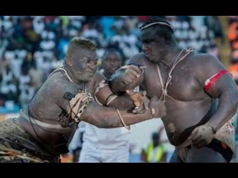 Senegalese Wrestling knockout Gris Bordeaux, Malick Niang, l