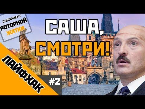 'Саша, СМОТРИ!' Кофе, хлеб и спорт. Лайфхак для Лукашенко #2 / БелАруское Поле Экспериментов