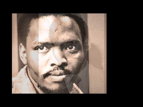 Steve Biko Speaks! Black Consciousness and the South African Revolution