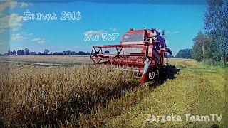Żniwa 2016 ☆ Massey Ferguson 507 & Mf-255 u Zarzeka TeamTV ㋡