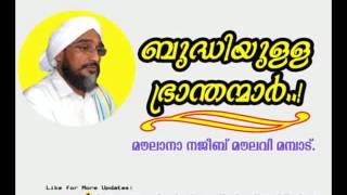 ബുദ്ധിയുള്ള ഭ്രാന്തന്മാർ Moulana Najeeb Moulavi