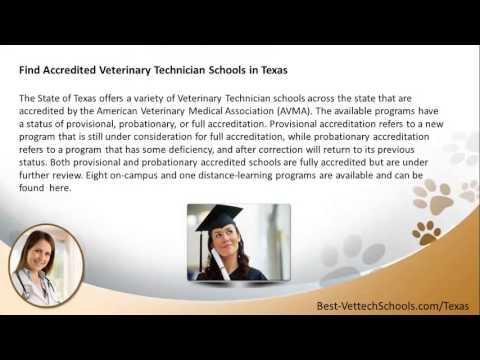 Top Veterinary Technician Schools in Texas | TX Vet Tech Programs