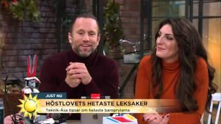 Höstlovets hetaste leksaker - Nyhetsmorgon (TV4)