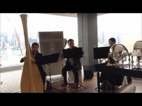 Wedding Gig @ Kowloon Peninsula 20170520 (Minuet No.3 in G Major, Bach)
