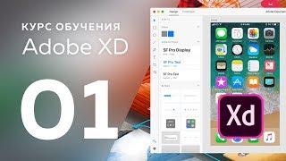 Уроки Adobe XD / № 01 | Введение
